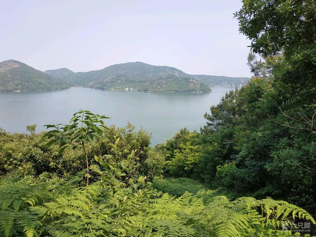 上林湖越窑遗址环湖探秘175