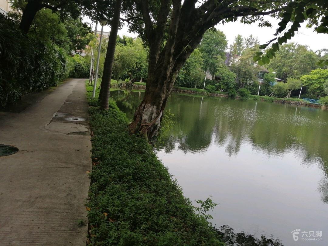 逸仙湖未命名