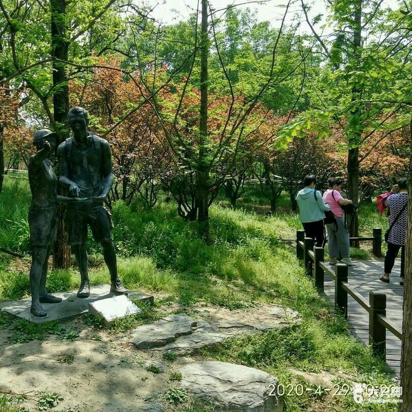 080_2020-02-11 香山登山,骑行抗疫情健身。